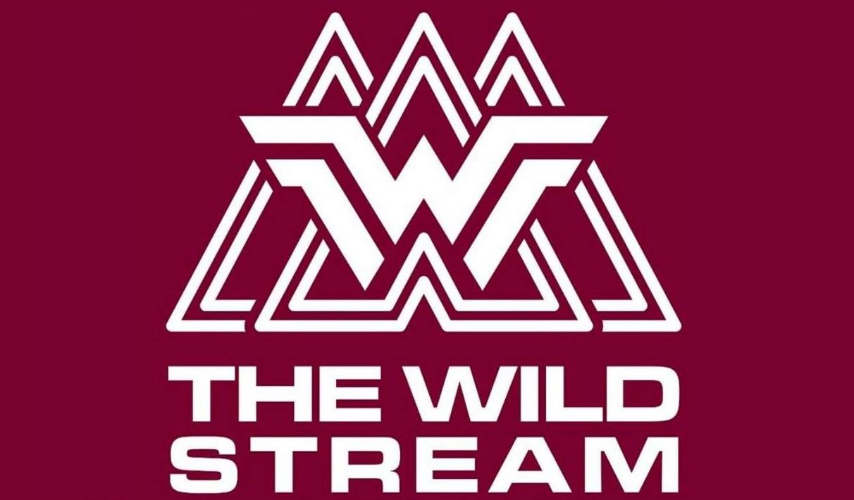 One Day Fashion Deals  - The Wild Stream